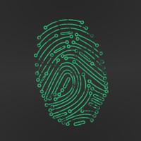 Identify Security logo